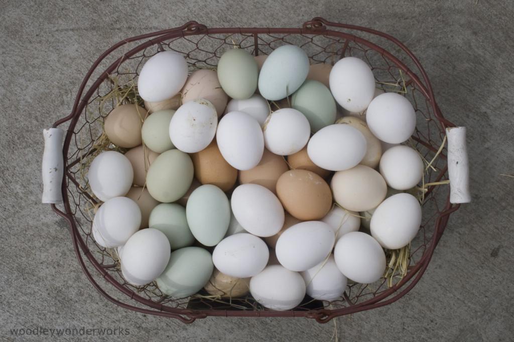 Super yummy, beautiful eggs.