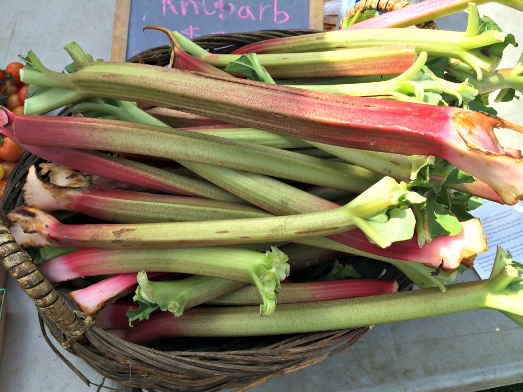 Beautiful Rhubarb at the farmer's market.