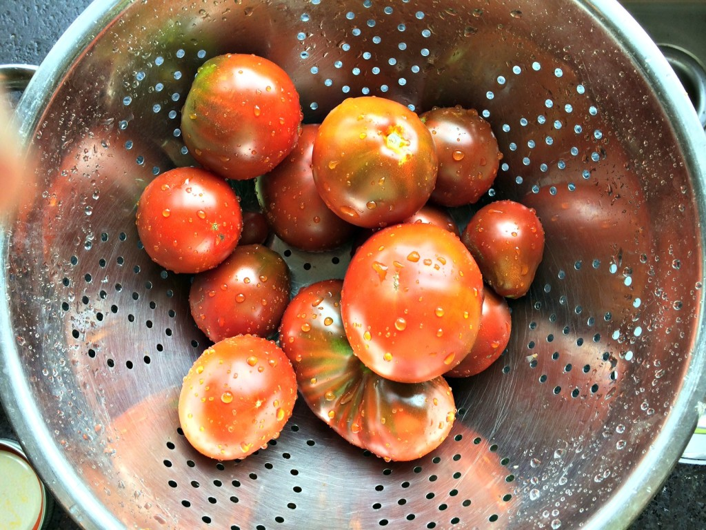 Tomatoes being washed.